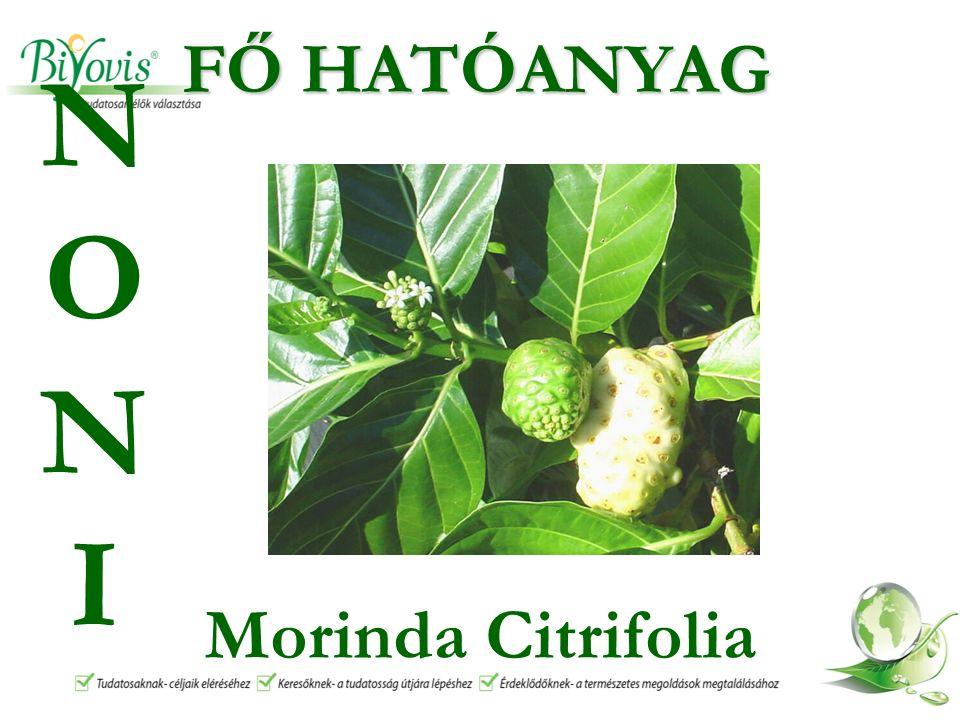 FŐ HATÓANYAG Morinda Citrifolia NONINONI