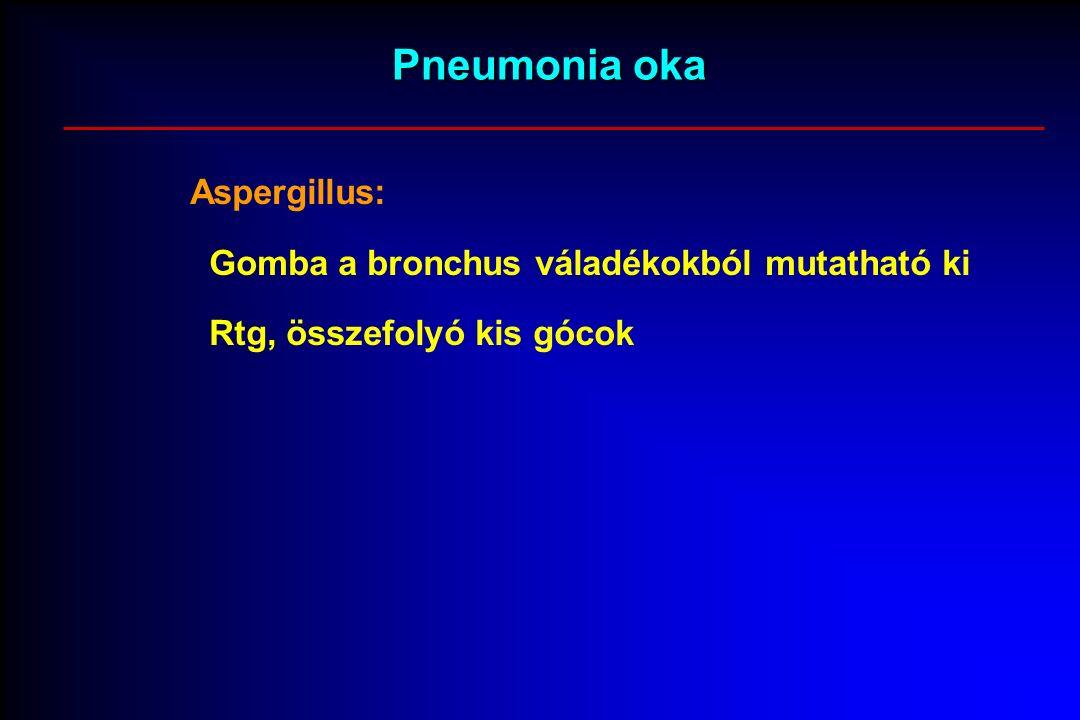 Pneumonia oka Aspergillus: Gomba a bronchus váladékokból mutatható ki Rtg, összefolyó kis gócok