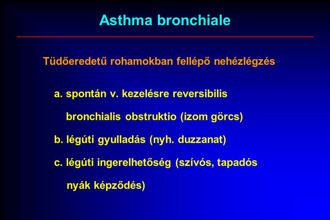 Asthma bronchiale Tüdőeredetű rohamokban fellépő nehézlégzés a.
