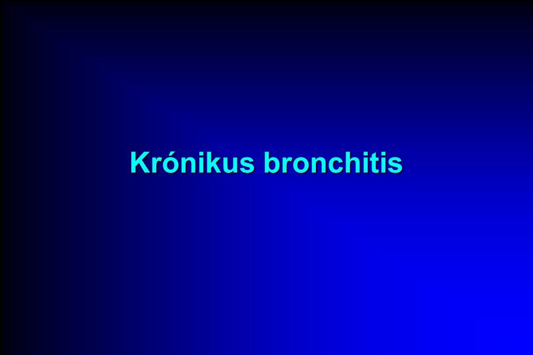 Krónikus bronchitis