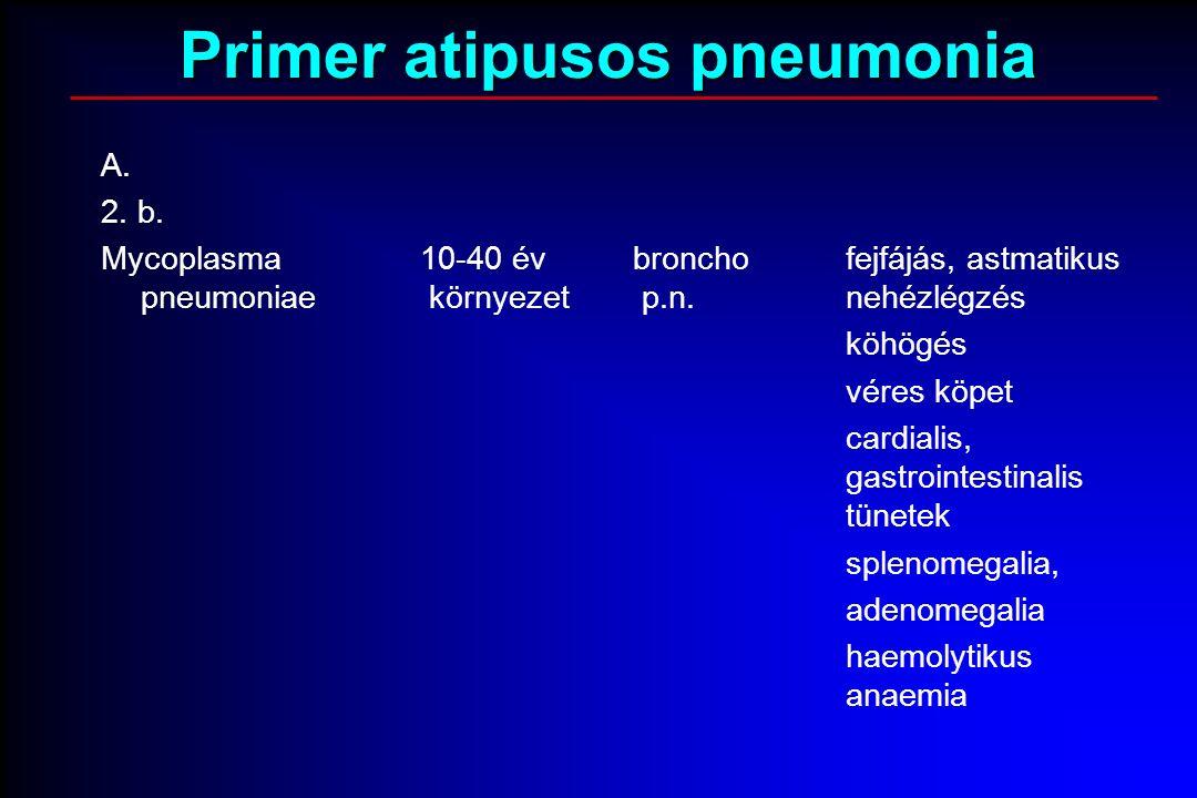 A. 2. b. Mycoplasma10-40 évbronchofejfájás, astmatikus pneumoniae környezet p.n.