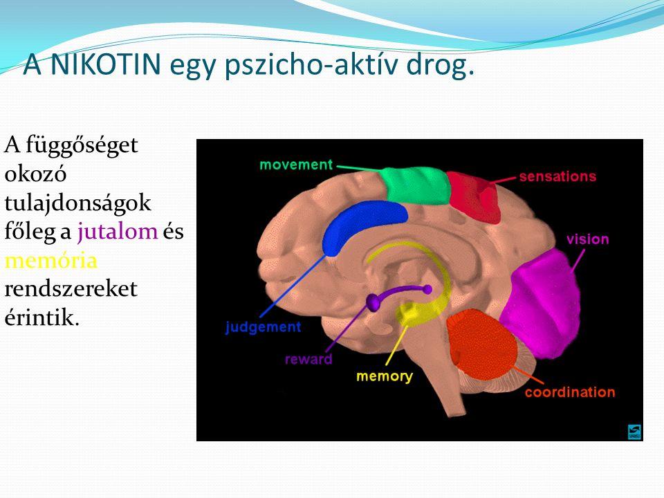 A NIKOTIN egy pszicho-aktív drog.