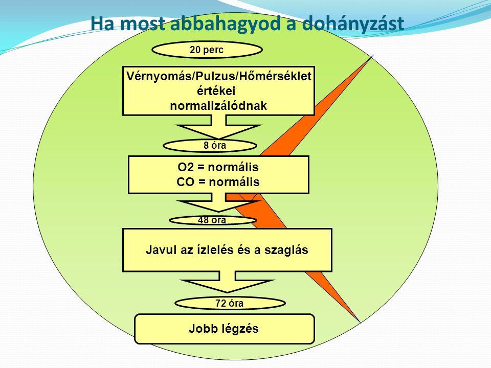 Vérnyomás/Pulzus/Hőmérséklet értékei normalizálódnak 20 perc 8 óra O2 = normális CO = normális 48 óra Javul az ízlelés és a szaglás 72 óra Jobb légzés Ha most abbahagyod a dohányzást