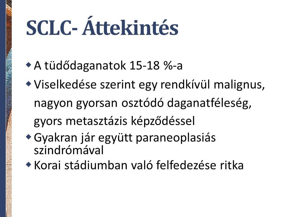 SCLC- Áttekintés  A tüdődaganatok 15-18 %-a  Viselkedése szerint egy rendkívül malignus, nagyon gyorsan osztódó daganatféleség, gyors metasztázis képződéssel  Gyakran jár együtt paraneoplasiás szindrómával  Korai stádiumban való felfedezése ritka