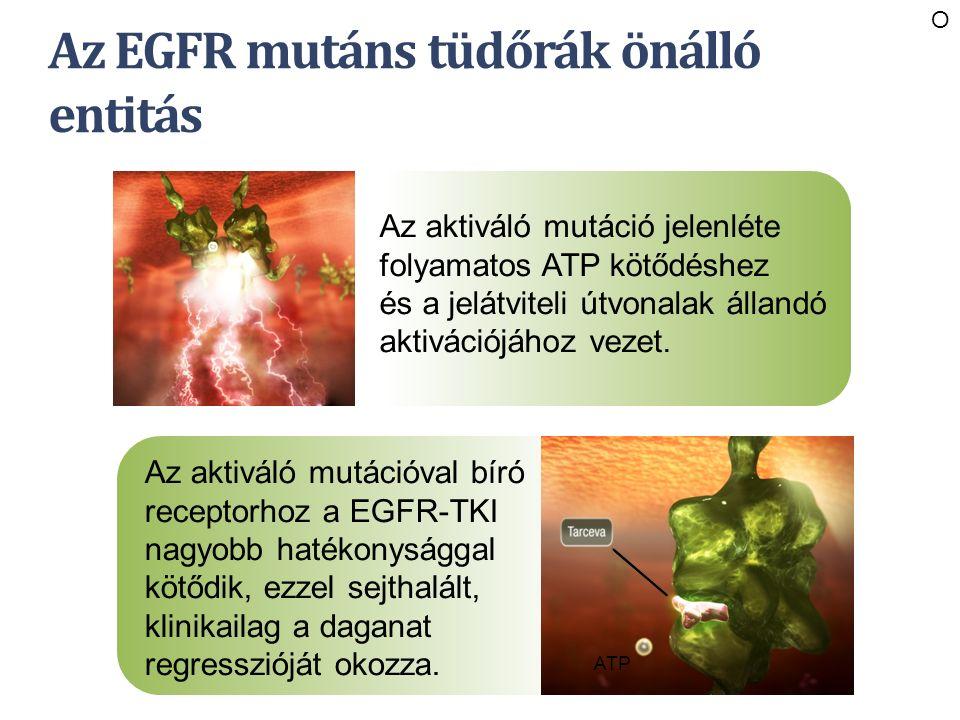 Az EGFR mutáns tüdőrák önálló entitás Az aktiváló mutáció jelenléte folyamatos ATP kötődéshez és a jelátviteli útvonalak állandó aktivációjához vezet.