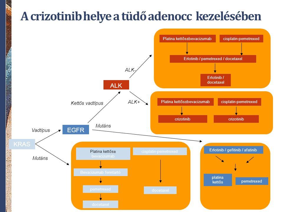 KRAS EGFR Vadtípus Mutáns cisplatin-pemetrexed docetaxel Platina kettős± bevacizumab Bevacizumab fenntartó pemetrexed docetaxel Erlotinib / gefitinib / afatinib platina kettős pemetrexed ALK ALK+ ALK- Kettős vadtípus Mutáns cisplatin-pemetrexedPlatina kettős±bevacizumab Erlotinib / pemetrexed / docetaxel Erlotinib / docetaxel A crizotinib helye a tüdő adenocc kezelésében crizotinib cisplatin-pemetrexedPlatina kettős±bevacizumab