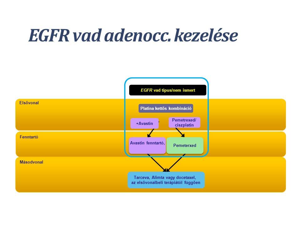 Másodvonal Tarceva, Alimta vagy docetaxel, az elsővonalbeli terápiától függően EGFR vad adenocc. kezelése Fenntartó Elsővonal EGFR vad típus/nem ismer