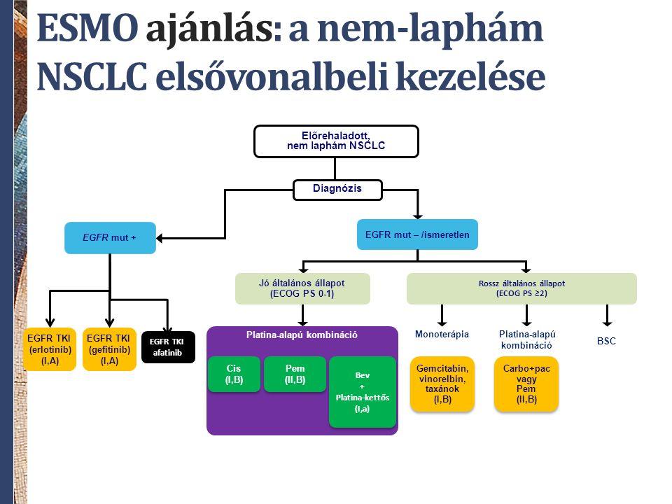 Diagnózis Előrehaladott, nem laphám NSCLC EGFR TKI (erlotinib) (I,A) EGFR mut + EGFR TKI (gefitinib) (I,A) ESMO ajánlás: a nem-laphám NSCLC elsővonalbeli kezelése EGFR mut – /ismeretlen Platina-alapú kombináció Cis (I,B) Cis (I,B) Pem (II,B) Pem (II,B) Bev + Platina-kettős (I,a) Bev + Platina-kettős (I,a) BSC Platina-alapú kombináció Monoterápia Gemcitabin, vinorelbin, taxánok (I,B) Gemcitabin, vinorelbin, taxánok (I,B) Jó általános állapot (ECOG PS 0-1) Carbo+pac vagy Pem (II,B) Carbo+pac vagy Pem (II,B) Rossz általános állapot (ECOG PS ≥2) EGFR TKI afatinib