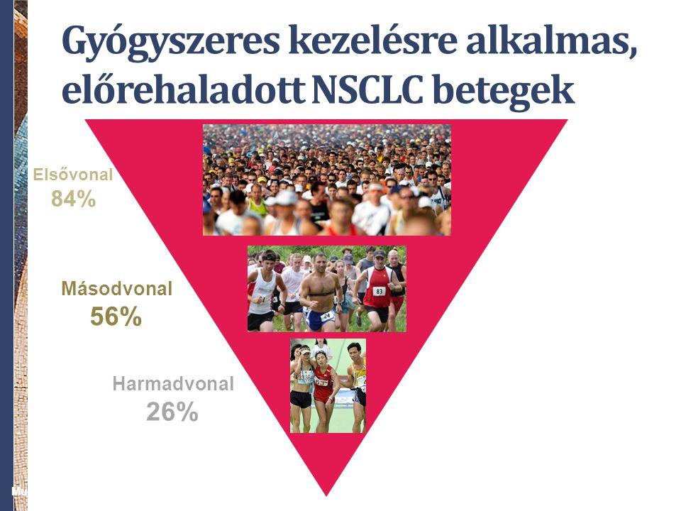 Gyógyszeres kezelésre alkalmas, előrehaladott NSCLC betegek Elsővonal 84% Másodvonal 56% Harmadvonal 26% Murillo, et al. Oncologist 2006