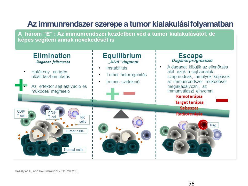 """Az immunrendszer szerepe a tumor kialakulási folyamatban Vesely et al, Ann Rev Immunol 2011, 29: 235 EquilibriumEscapeElimination 56 A három E : Az immunrendszer kezdetben véd a tumor kialakulásától, de képes segíteni annak növekedését is Tumor cells Normal cells Treg CD8 + T cell CD4 + T cell NK cells Daganat felismerés Hatékony antigén előállítás/bemutatás Az effektor sejt aktiváció és működés megfelelő """"Alvó daganat Instabilitás Tumor heterogenitás Immun szelekció A daganat kibújik az ellenőrzés alól, azok a sejtvonalak szaporodnak, amelyek képesek az immunrendszer működését megakadályozni, az immunválaszt elnyomni."""
