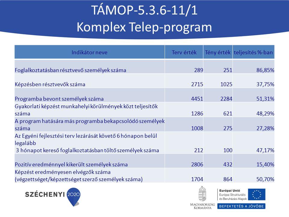 TÁMOP-5.3.6-11/1 Komplex Telep-program Indikátor neveTerv értékTény értékteljesítés %-ban Foglalkoztatásban résztvevő személyek száma28925186,85% Képz