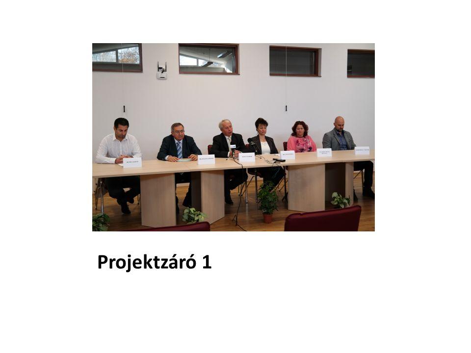 Projektzáró 1