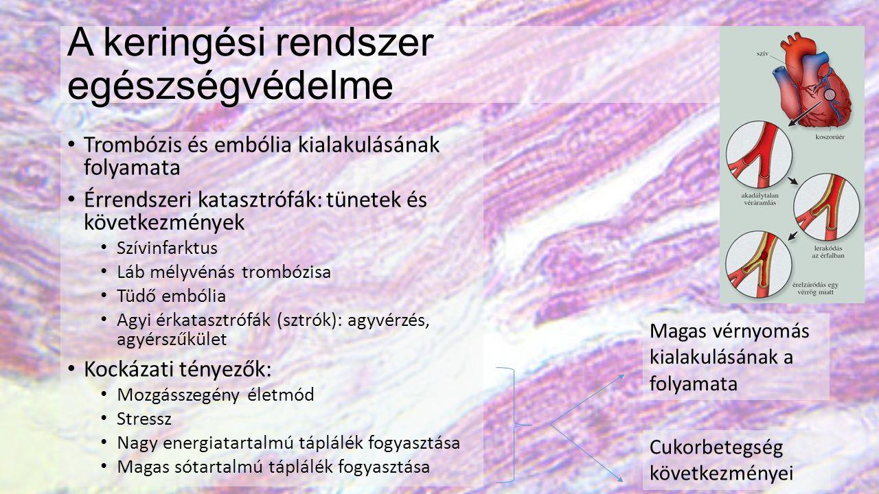 A keringési rendszer egészségvédelme Trombózis és embólia kialakulásának folyamata Érrendszeri katasztrófák: tünetek és következmények Szívinfarktus Láb mélyvénás trombózisa Tüdő embólia Agyi érkatasztrófák (sztrók): agyvérzés, agyérszűkület Kockázati tényezők: Mozgásszegény életmód Stressz Nagy energiatartalmú táplálék fogyasztása Magas sótartalmú táplálék fogyasztása Magas vérnyomás kialakulásának a folyamata Cukorbetegség következményei
