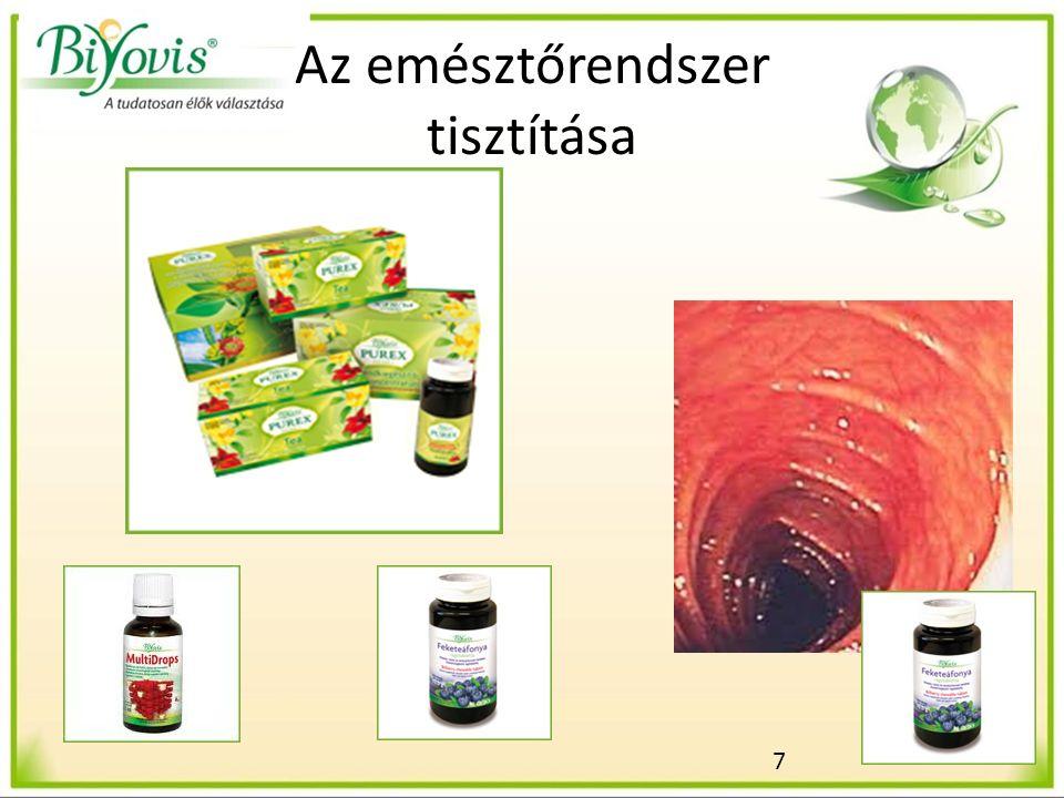 7 Az emésztőrendszer tisztítása