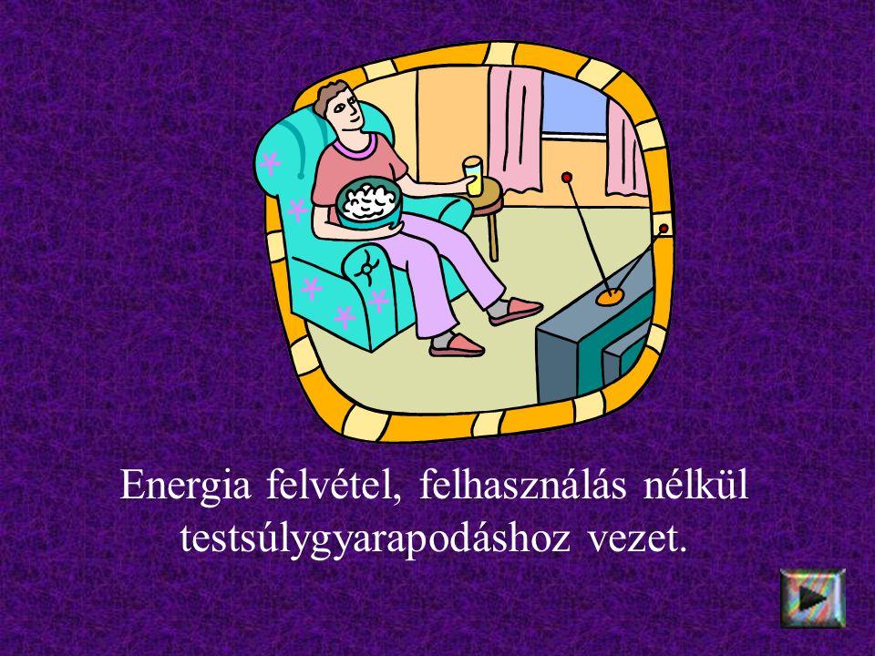 Energia felvétel, felhasználás nélkül testsúlygyarapodáshoz vezet.