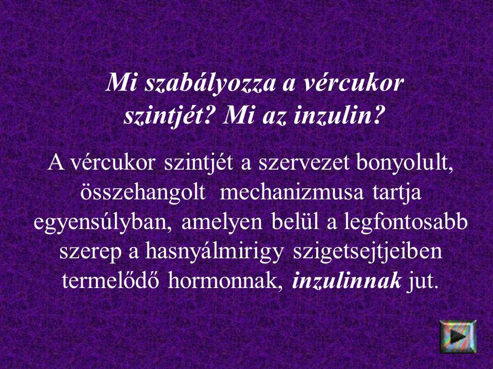 Mi szabályozza a vércukor szintjét. Mi az inzulin.
