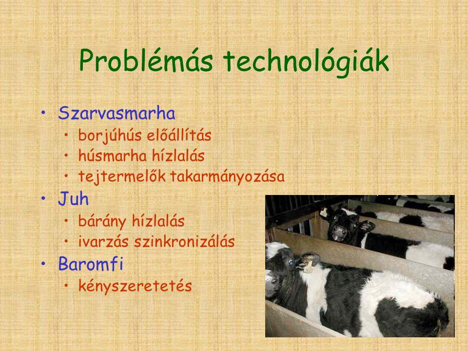 Problémás technológiák Szarvasmarha borjúhús előállítás húsmarha hízlalás tejtermelők takarmányozása Juh bárány hízlalás ivarzás szinkronizálás Baromfi kényszeretetés