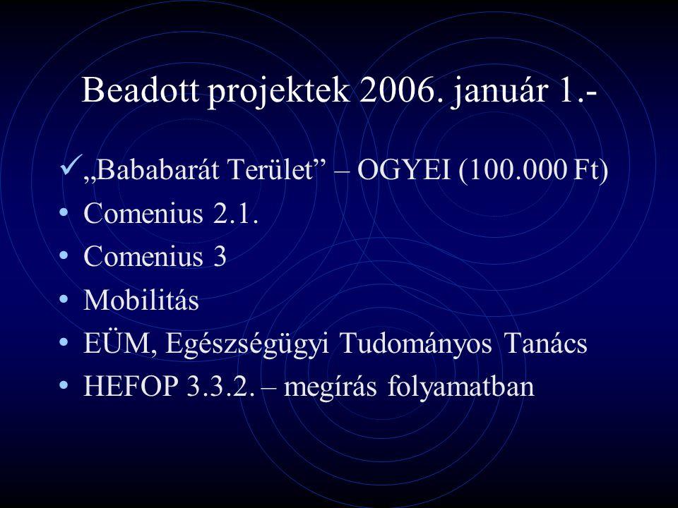 """Beadott projektek 2006. január 1.- """"Bababarát Terület – OGYEI (100.000 Ft) Comenius 2.1."""