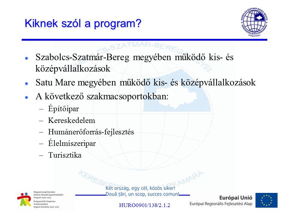 Kiknek szól a program? Szabolcs-Szatmár-Bereg megyében működő kis- és középvállalkozások Satu Mare megyében működő kis- és középvállalkozások A követk