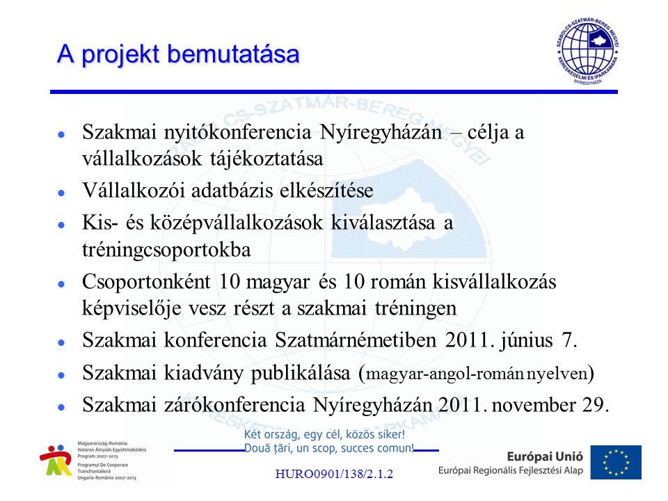A projekt bemutatása Szakmai nyitókonferencia Nyíregyházán – célja a vállalkozások tájékoztatása Vállalkozói adatbázis elkészítése Kis- és középvállalkozások kiválasztása a tréningcsoportokba Csoportonként 10 magyar és 10 román kisvállalkozás képviselője vesz részt a szakmai tréningen Szakmai konferencia Szatmárnémetiben 2011.