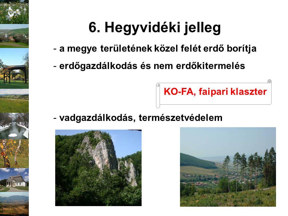 - a megye területének közel felét erdő borítja - erdőgazdálkodás és nem erdőkitermelés - vadgazdálkodás, természetvédelem 6. Hegyvidéki jelleg KO-FA,
