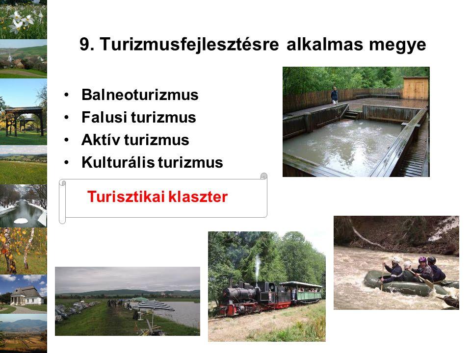 9. Turizmusfejlesztésre alkalmas megye Balneoturizmus Falusi turizmus Aktív turizmus Kulturális turizmus Turisztikai klaszter