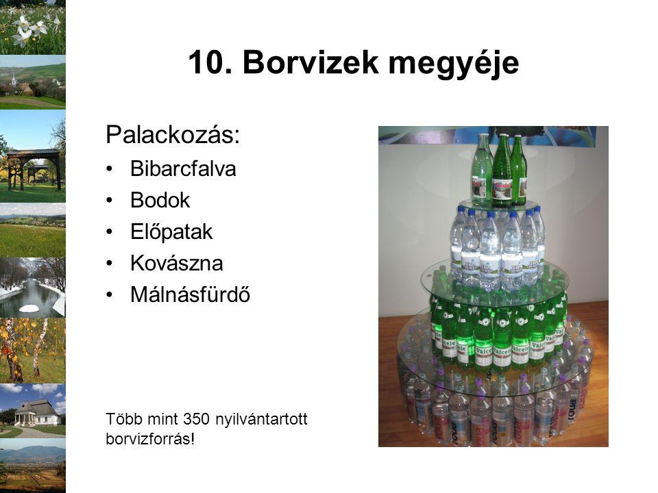10. Borvizek megyéje Palackozás: Bibarcfalva Bodok Előpatak Kovászna Málnásfürdő Több mint 350 nyilvántartott borvizforrás!