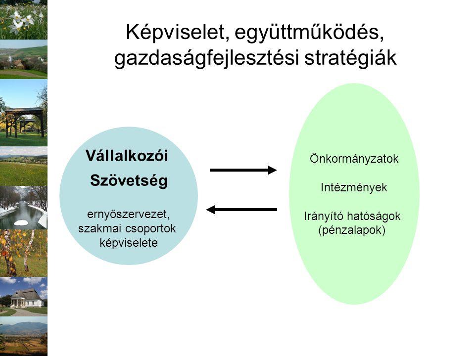 Képviselet, együttműködés, gazdaságfejlesztési stratégiák Vállalkozói Szövetség ernyőszervezet, szakmai csoportok képviselete Önkormányzatok Intézmény