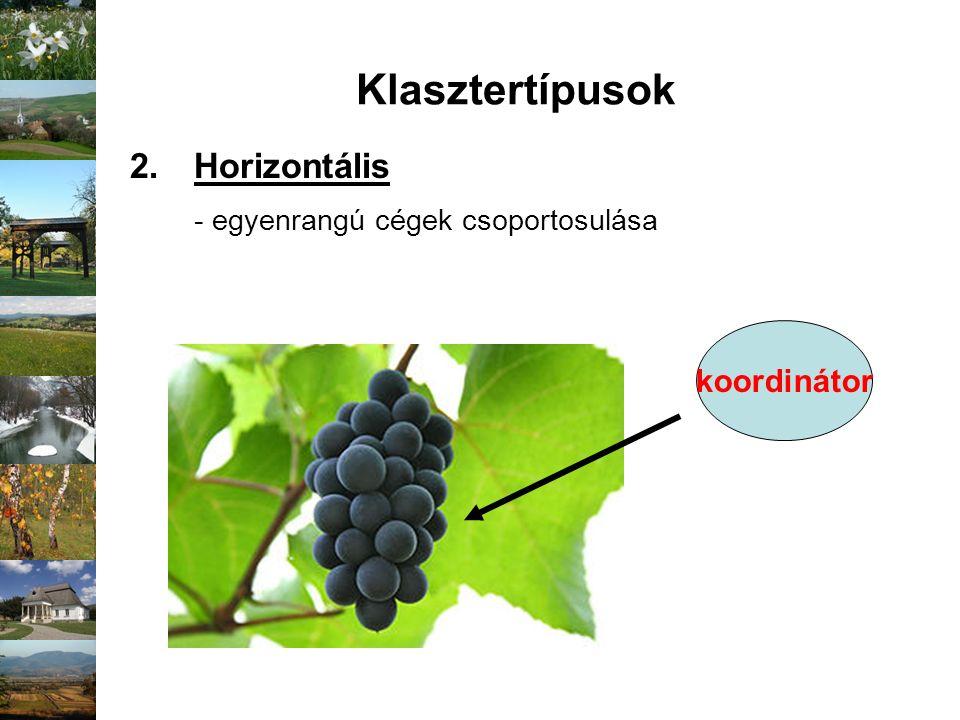Klasztertípusok 2.Horizontális - egyenrangú cégek csoportosulása koordinátor