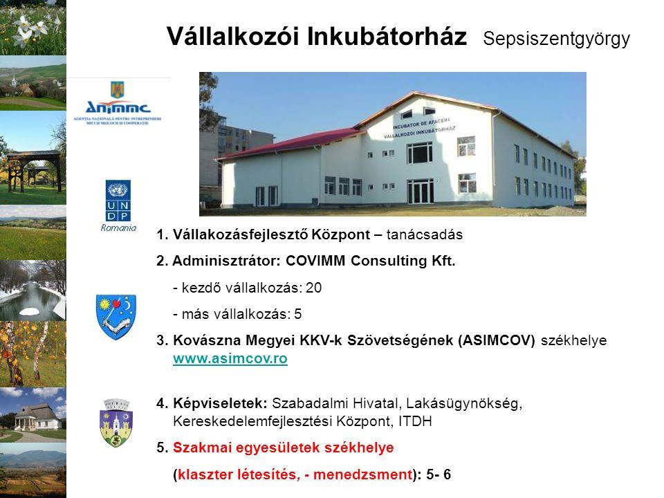 Vállalkozói Inkubátorház Sepsiszentgyörgy 1. Vállakozásfejlesztő Központ – tanácsadás 2. Adminisztrátor: COVIMM Consulting Kft. - kezdő vállalkozás: 2