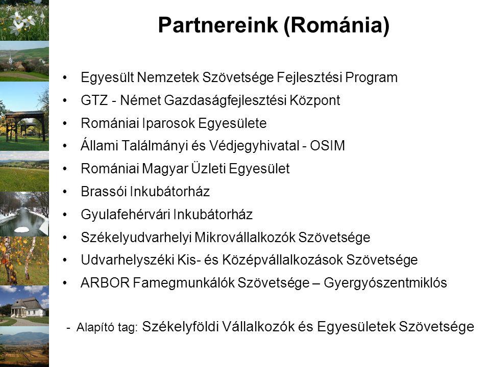 Partnereink (Románia) Egyesült Nemzetek Szövetsége Fejlesztési Program GTZ - Német Gazdaságfejlesztési Központ Romániai Iparosok Egyesülete Állami Tal