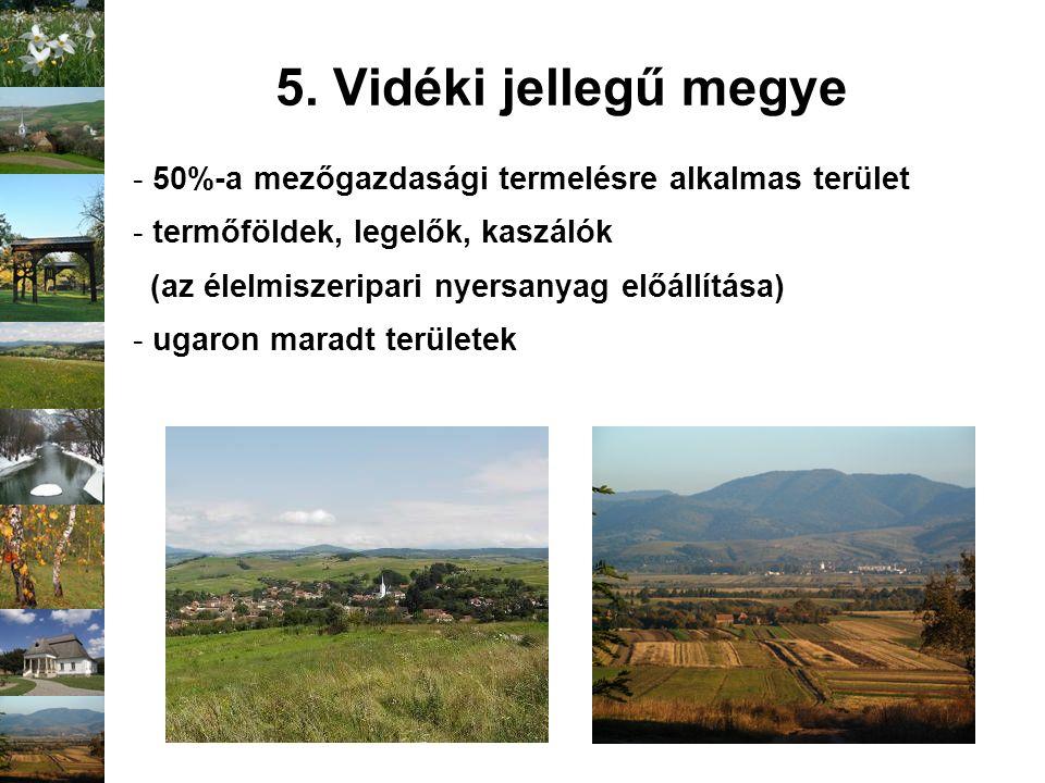 5. Vidéki jellegű megye - 50%-a mezőgazdasági termelésre alkalmas terület - termőföldek, legelők, kaszálók (az élelmiszeripari nyersanyag előállítása)