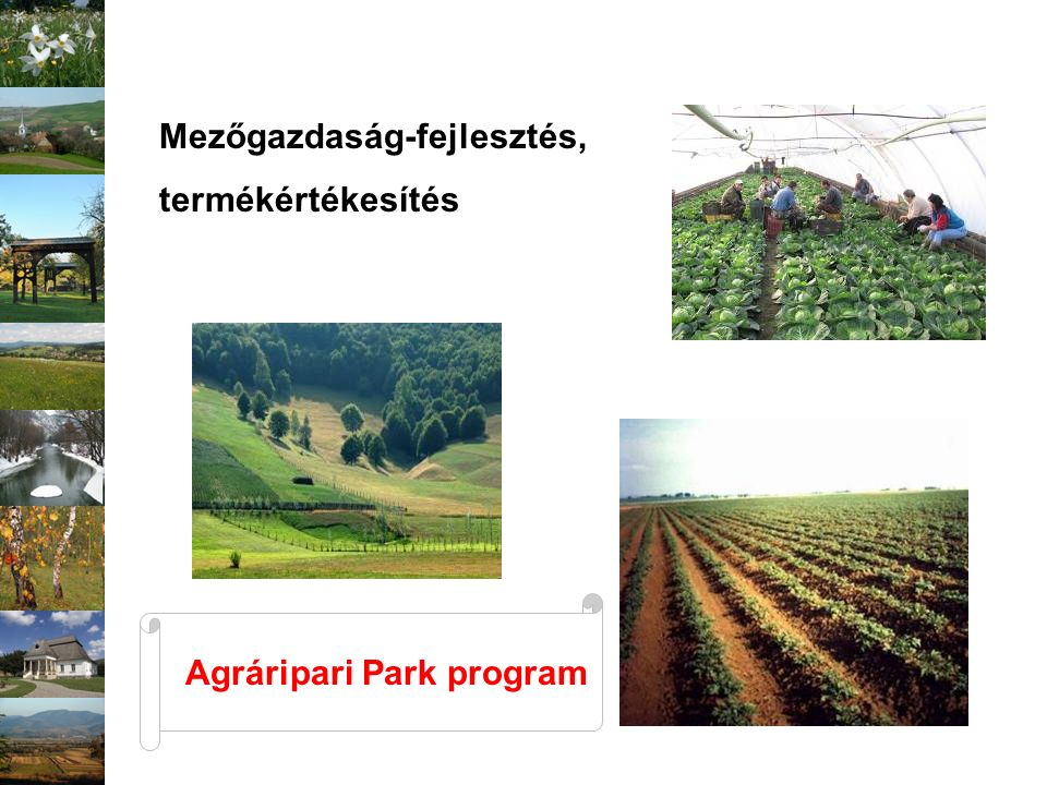 Székelyföld – Magyarország gazdasági kapcsolatok