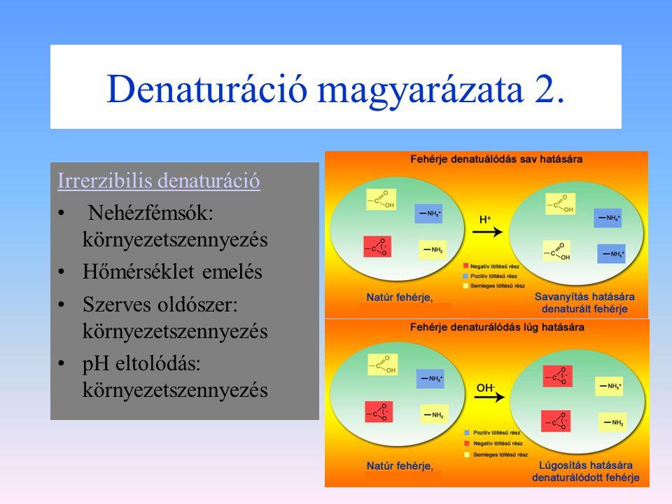 Denaturáció magyarázata 1. Reverzibilis denaturáció: A denaturáció során a fehérje hidrátburkát elvonja a denaturáló hatás. Ilyenkor csak másodrendű k