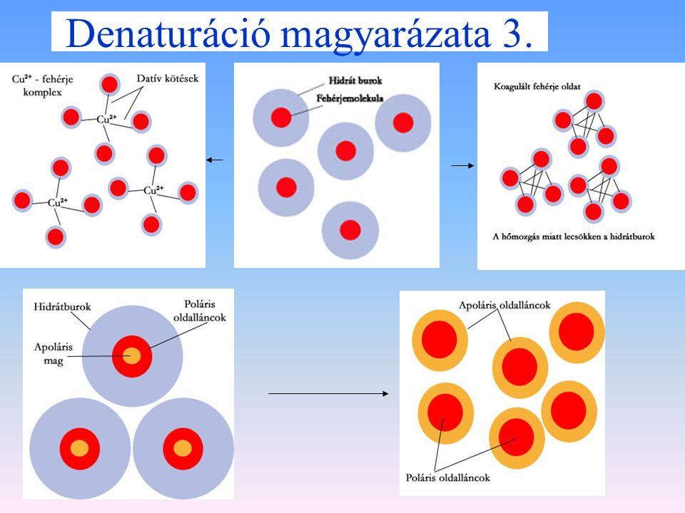 Denaturáció magyarázata 2. Irrerzibilis denaturáció Nehézfémsók: környezetszennyezés Hőmérséklet emelés Szerves oldószer: környezetszennyezés pH eltol