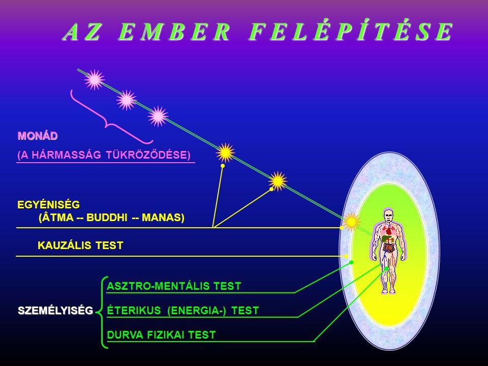 DURVA FIZIKAI TEST ÉTERIKUS (ENERGIA-) TEST ASZTRO-MENTÁLIS TEST KAUZÁLIS TEST EGYÉNISÉG EGYÉNISÉG (ÂTMA -- BUDDHI -- MANAS) MONÁD (A HÁRMASSÁG TÜKRÖZŐDÉSE) SZEMÉLYISÉG A Z E M B E R F E L É P Í T É S E
