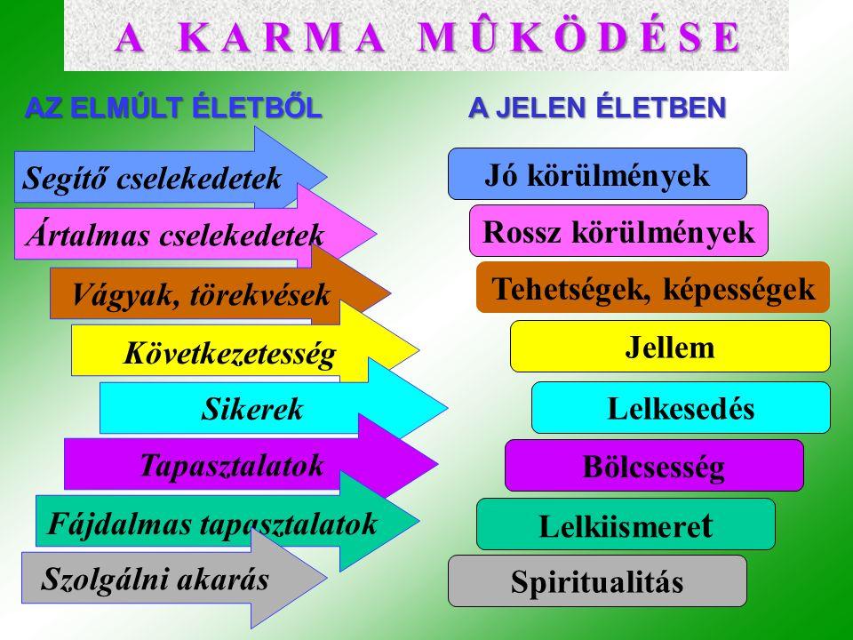 Segítő cselekedetek Jó körülmények Ártalmas cselekedetek Rossz körülmények Vágyak, törekvések Tehetségek, képességek Következetesség Jellem Sikerek Lelkesedés Tapasztalatok Bölcsesség Fájdalmas tapasztalatok Lelkiismere t Szolgálni akarás Spiritualitás AZ ELMÚLT ÉLETBŐL A JELEN ÉLETBEN A K A R M A M Û K Ö D É S E