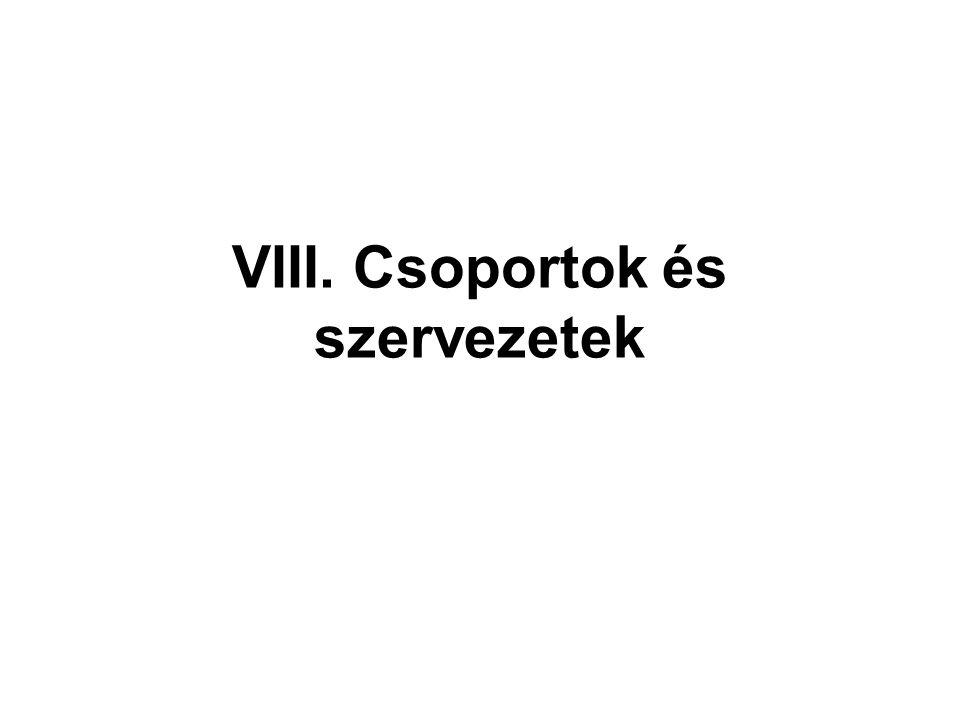 VIII. Csoportok és szervezetek