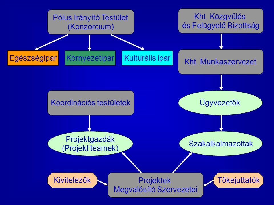 Projektek Megvalósító Szervezetei EgészségiparKörnyezetiparKulturális ipar Kht.