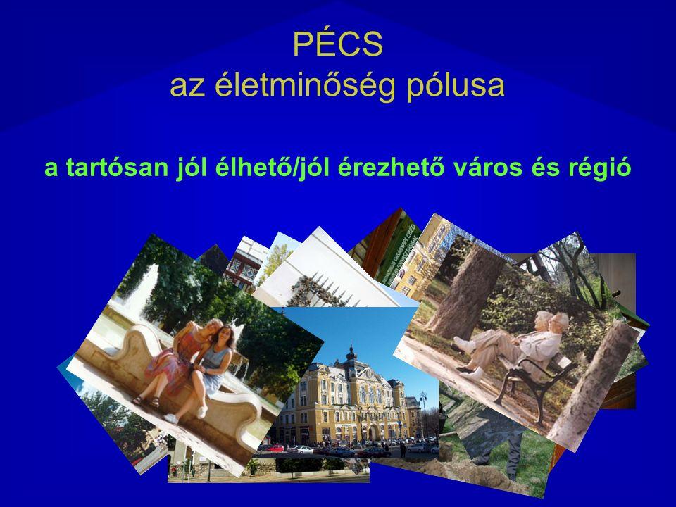 A Pólus koordináló konzorciumának felépítése Konzorcium Integrátor és támogató szervezetek interfésze PÉCS az életminőség pólusa