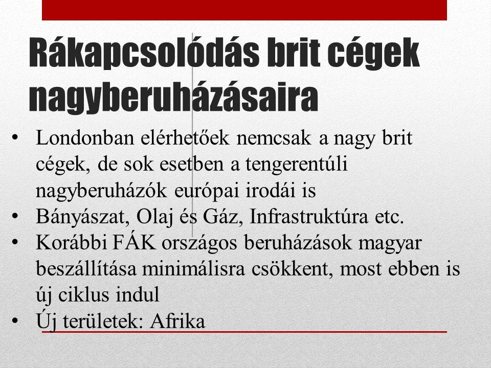 Innovatív szektor, start-up cégek Ez egy másik Hungaricum Globalitás Legtöbb ilyen cégnek szüksége van életpályája során arra, hogy megjelenjen valamelyik nagy befogadó országban : USA vagy UK.