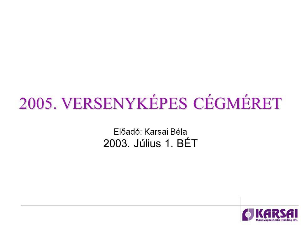 2005. VERSENYKÉPES CÉGMÉRET Előadó: Karsai Béla 2003. Július 1. BÉT