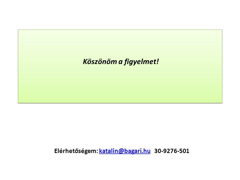 Elérhetőségem: katalin@bagari.hu 30-9276-501katalin@bagari.hu Köszönöm a figyelmet!