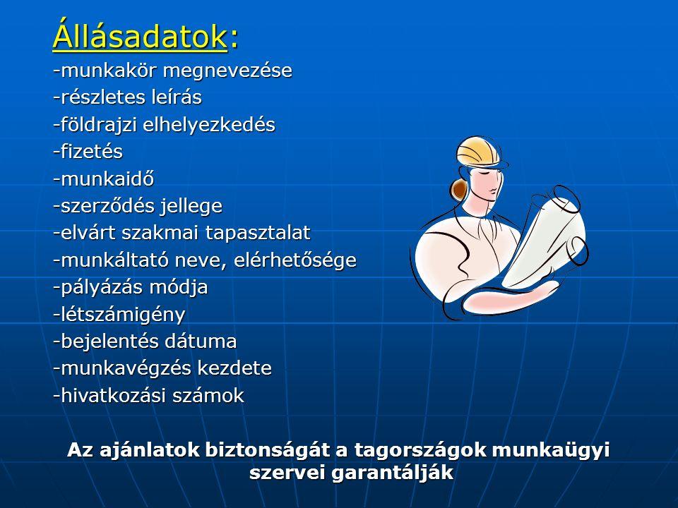Állásadatok: -munkakör megnevezése -részletes leírás -földrajzi elhelyezkedés -fizetés-munkaidő -szerződés jellege -elvárt szakmai tapasztalat -munkál