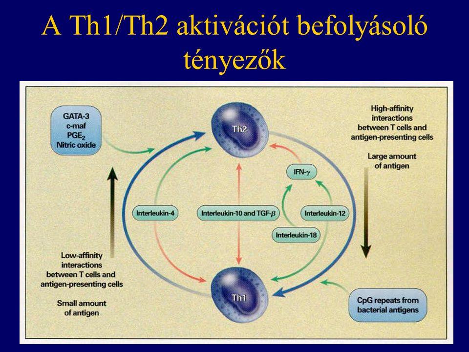 A Th1/Th2 aktivációt befolyásoló tényezők