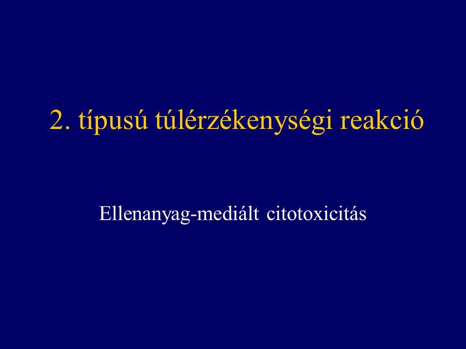 2. típusú túlérzékenységi reakció Ellenanyag-mediált citotoxicitás