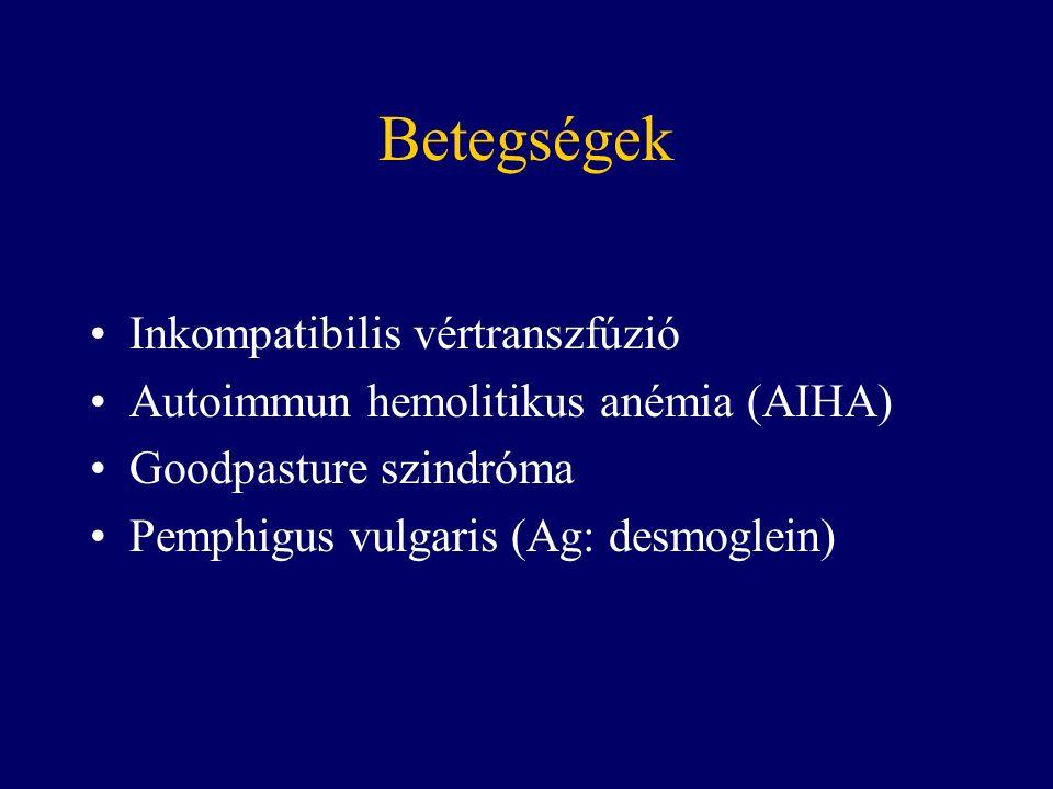 Betegségek Inkompatibilis vértranszfúzió Autoimmun hemolitikus anémia (AIHA) Goodpasture szindróma Pemphigus vulgaris (Ag: desmoglein)