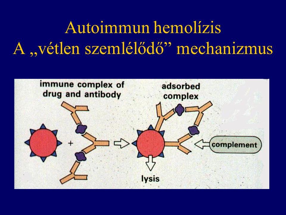 """Autoimmun hemolízis A """"vétlen szemlélődő mechanizmus"""