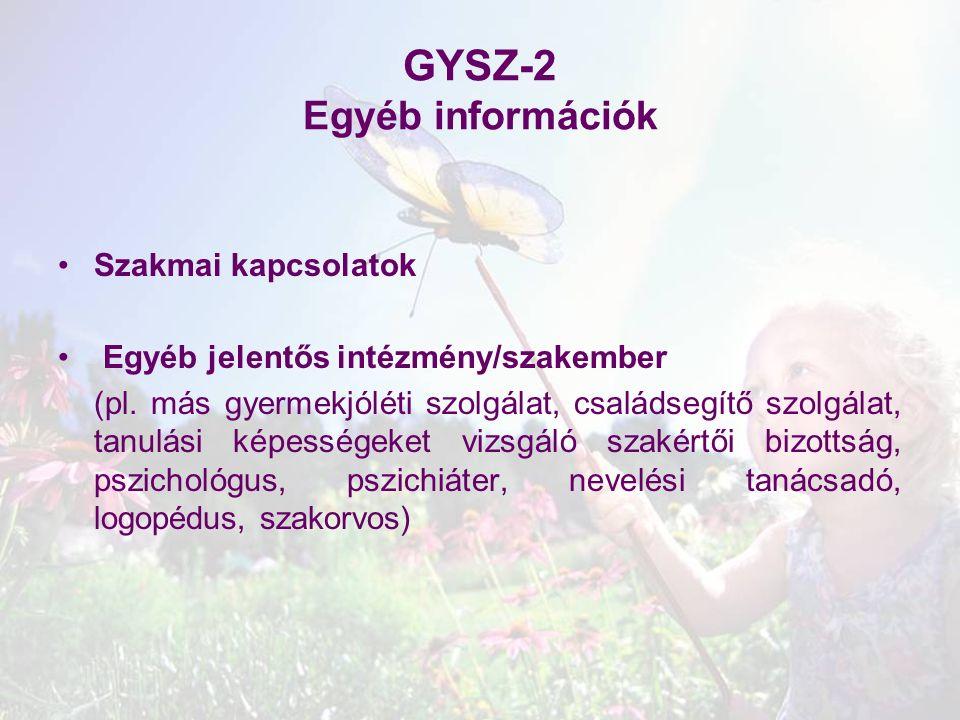 GYSZ-2 Egyéb információk Szakmai kapcsolatok Egyéb jelentős intézmény/szakember (pl. más gyermekjóléti szolgálat, családsegítő szolgálat, tanulási kép