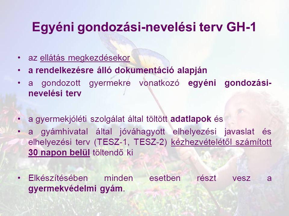 Egyéni gondozási-nevelési terv GH-1 az ellátás megkezdésekor a rendelkezésre álló dokumentáció alapján a gondozott gyermekre vonatkozó egyéni gondozás
